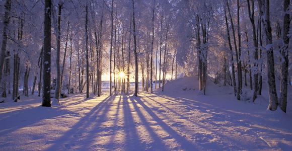 Winter Solstice 2010