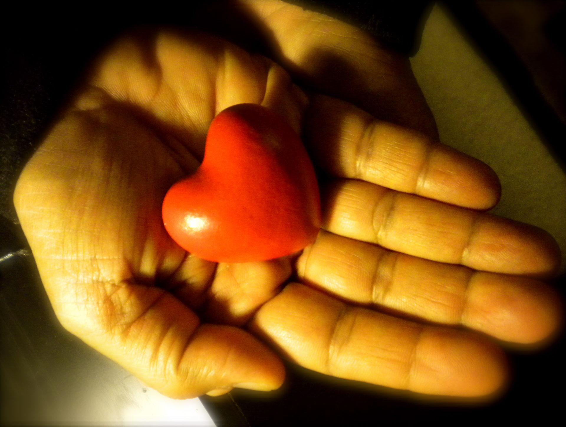 kindness & compassion