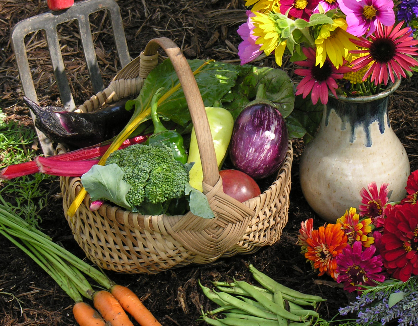Image of Home-Grown Vegetables