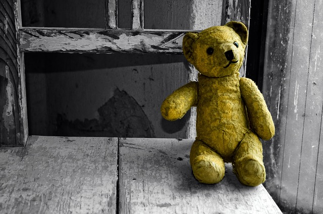 Image of a teddy